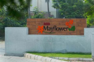 B&B Mayflower